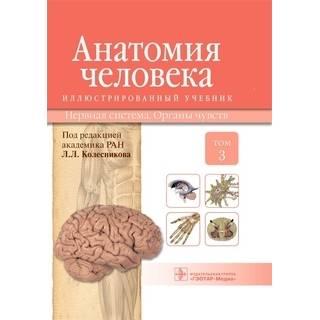 Анатомия человека : иллюстр. учебник : в 3 т. : Т. 3. Нервная система. Органы чувств М. : ГЭОТАР-Медиа, 2015.216 с. : ил. И. В. Гайворонский Л. Л. Колесников Г. И. 2015 г. (Гэотар)