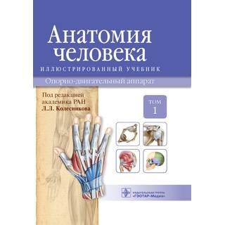 Анатомия человека : иллюстр. учебник : в 3 т. : Т. 1. Опорно-двигательный аппарат. И. В. Гайворонский Л. Л. Колесников Г. И. 2014 г. (Гэотар)